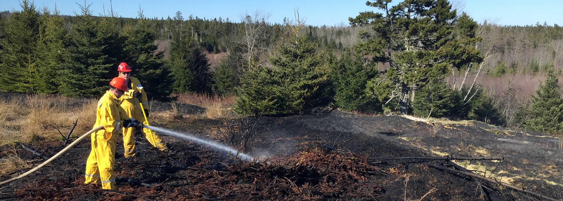 ldfd-forest-fire